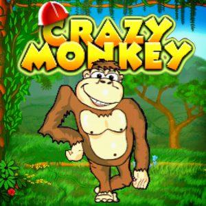 пять особенностей игрового автомата Crazy Monkey